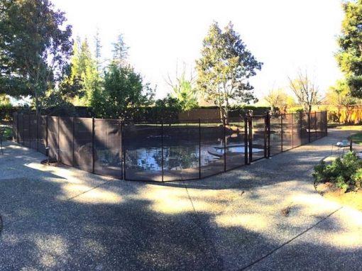 San Ramon Pool Fence
