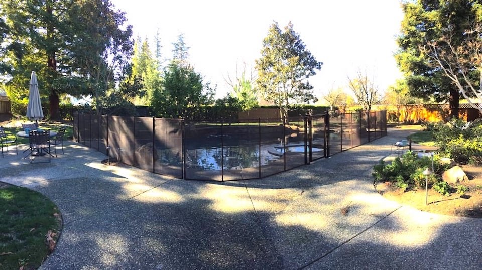 San Ramon Baby Barrier Pool Fence