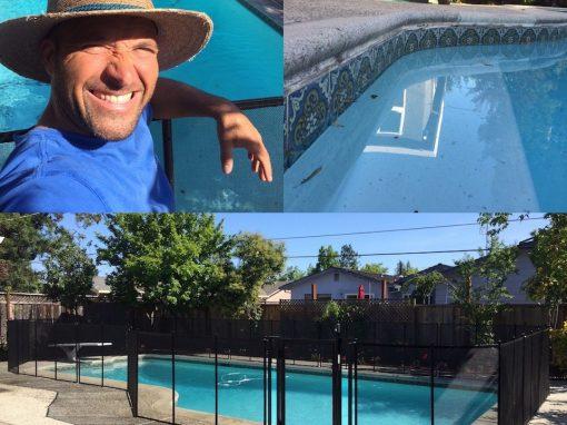 Redwood City Pool Fence