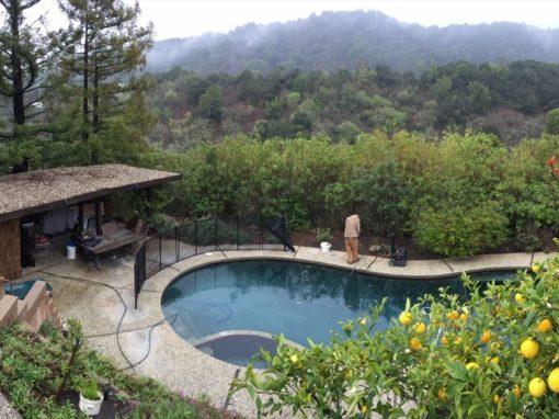 Los Altos Pools