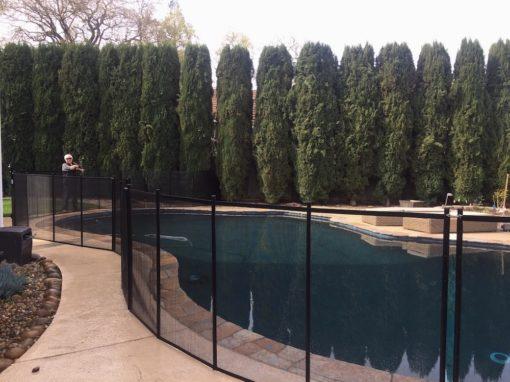 Swimming Pools Walnut Creek