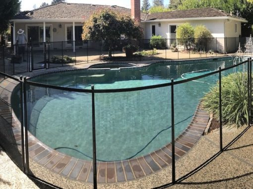 Swimming Los Altos