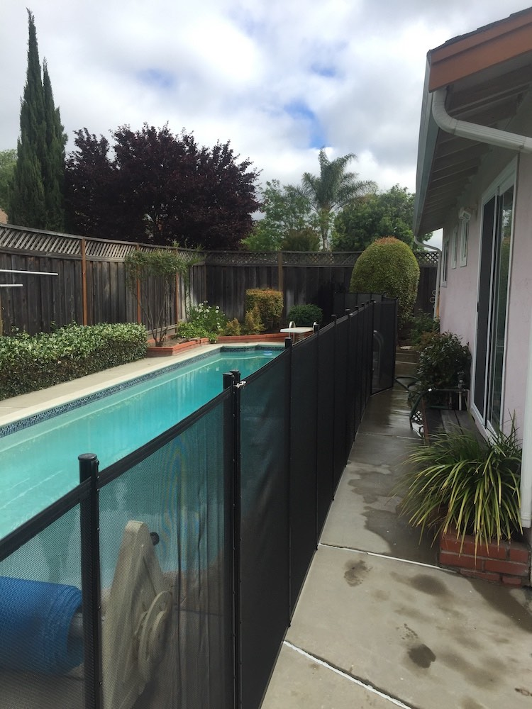 Fremont Pool Fences Swimming
