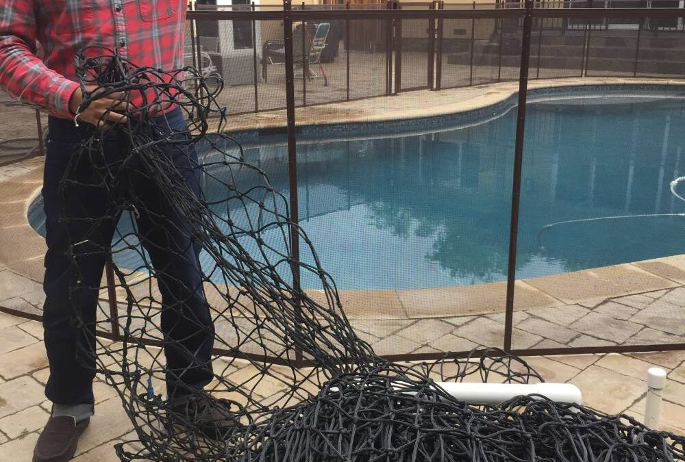Safety Swimming Pools Fences